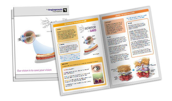 amd-brochure